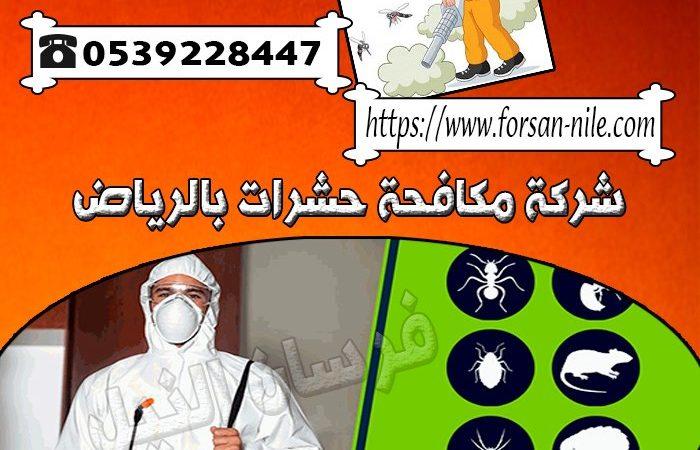 شركة مكافحة حشرات بالرياض 0544712414